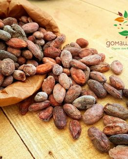 Какаови зърна Hispaniola органични сурови цели