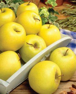 Био ябълки